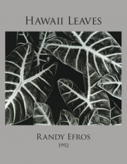 Hawaii Leaves Book_Efros